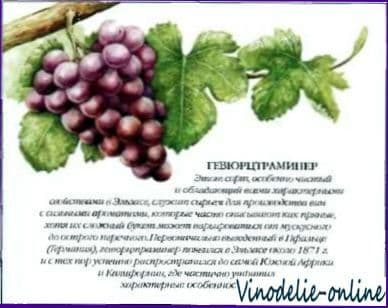 Белые сорта винограда