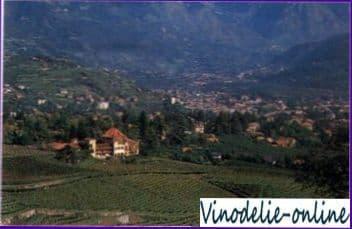 Вина Италии
