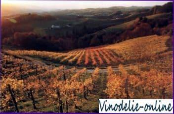 Виноделие в Австрии