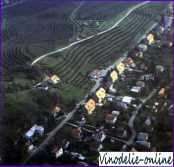 Виноделие в Словении