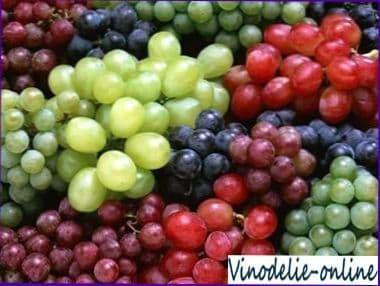 Информация о винограде