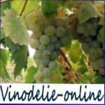 Биологические особенности виноградного растения