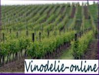 Виноградарство в мире