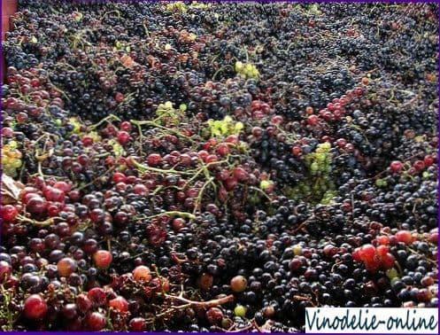 Столицей виноделия на острове