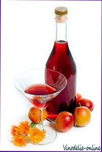 Приготовление виноградного вина в домашних условиях